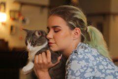 «Мы создали место, где можно прийти и согреться возле котов»