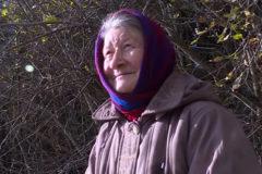 Вологжане погасили кредит пенсионерки, который она взяла для покупки дров