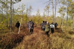 На Урале все село вышло на поиски пропавшей в болотах пенсионерки – ее нашли обессилевшей, но живой через три дня