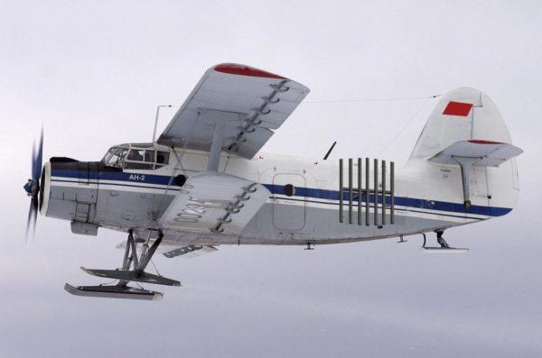 В Архангельской области самолет Ан-2 совершил жесткую посадку в лесу – жертв нет, но есть пострадавшие