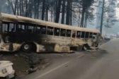 Количество жертв пожара в Калифорнии выросло до 59