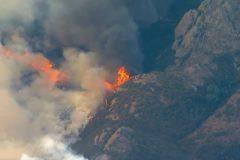 При пожарах в Калифорнии пропали более 600 человек, погибли 66
