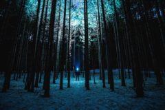 Пермяки нашли потерявшихся в лесу детей