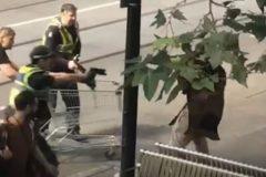 Более 130 тысяч долларов собрали для бездомного, который помог остановить террориста тележкой