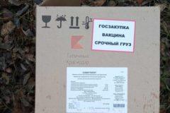 В Краснодаре нашли коробки с вакцинами в лесу