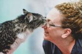 В Канаде домашнего кота случайно отправили по почте – он проехал 1200 км живым и невредимым