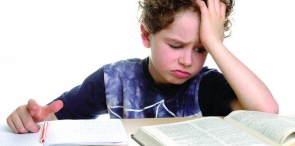 Министр просвещения рассказала, сколько времени у школьников должно занимать домашнее задание