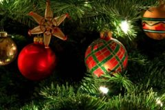 Исследователи рассказали, сколько россиян не выбрасывают новогоднюю елку до лета