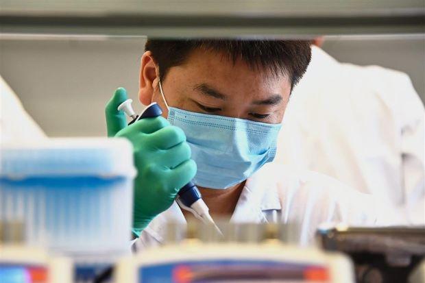 Двойняшки из Китая и генетический эксперимент: в чем причины скандала