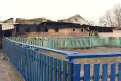 В Москве сгорел приют для животных, владельцы подозревают поджог