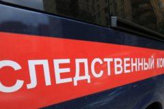 Делом о заражении детей гепатитом С займется главное следственное управление СК РФ