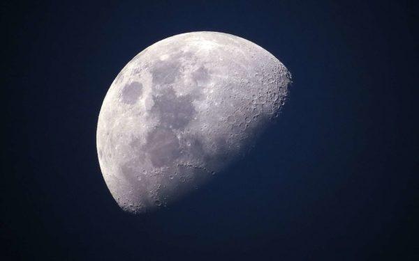 На Луне впервые в истории удалось прорастить семена