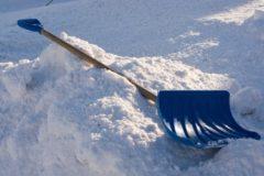 В Саратове уволили чиновницу, отправившую учителей убирать снег в мешки
