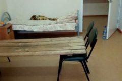 Главврача пензенской больницы оштрафуют за кровати из досок
