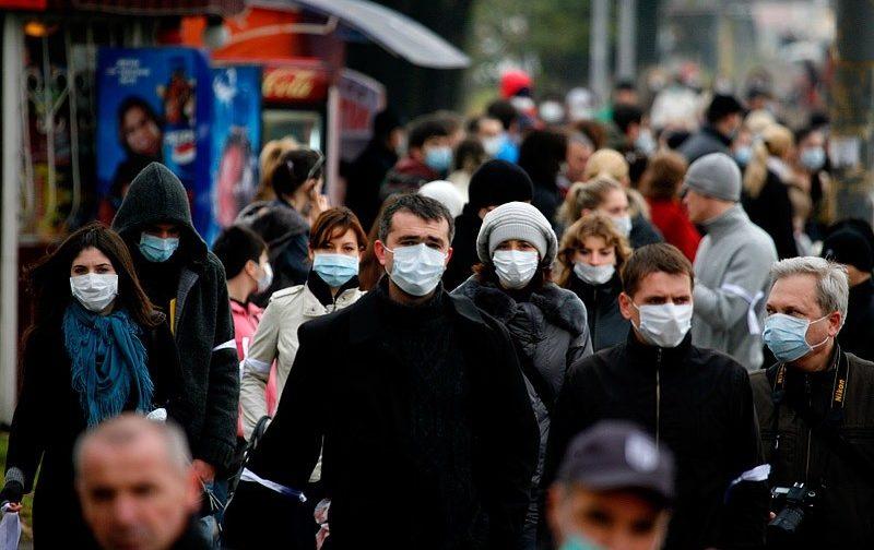 """В Грузию пришел """"свиной грипп"""" — грозит ли он России?"""