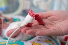 В Японии врачи выходили новорожденного весом 268 грамм