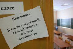 В России из-за гриппа закрыли тысячу детсадов и почти четыре тысячи школ