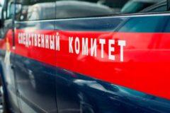 В Подмосковье задержали опекунов погибшего ребенка, всех приемных детей изъяли
