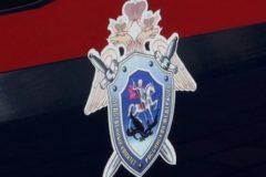 Главу СК попросили проконтролировать расследование случаев дизентерии в детсадах Москвы