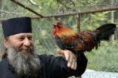 Православие или смех? «Вредные советы» отца Саввы (Мажуко)