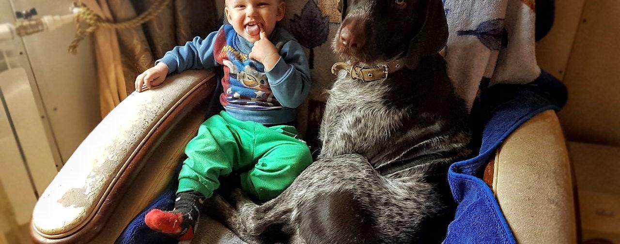 «Сначала я спасала собак, потом они – меня». Пес Граф привел хозяйку в горящую комнату сына и погиб