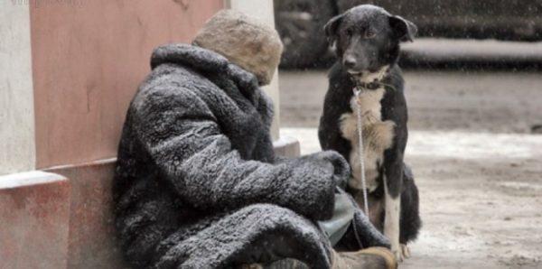В Петербурге депутаты поддержали поправки о выделении жилья бездомным