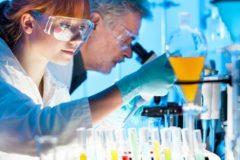 Счетная палата признала существующую господдержку молодых ученых малоэффективной