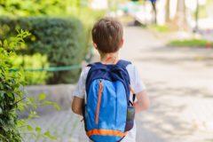 В Новосибирской области мальчика с ВИЧ отказались принимать в школу