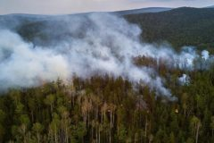 МЧС: Противопожарный режим ввели в 22 регионах России