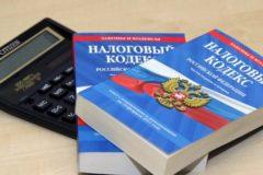 Закон о налоговых льготах для многодетных приняли в третьем чтении