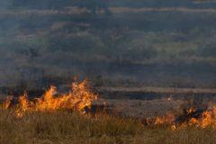 В Забайкальском крае сгорела половина села, введен режим ЧС