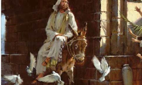 Власть Царя, Который едет на осле. И царство без насилия