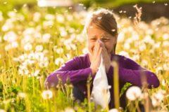 Россияне рассказали, от какой аллергии страдают чаще всего