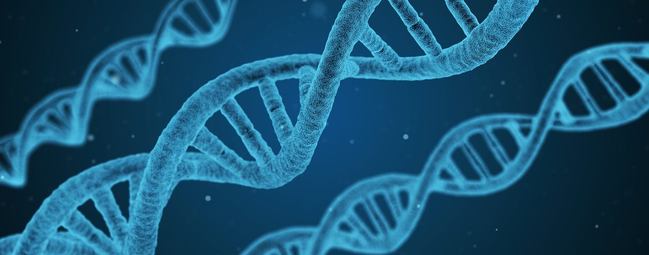 Генетические тесты: как не попасть на деньги