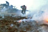 На Чукотке природные пожары распространились на 14 тысяч гектаров