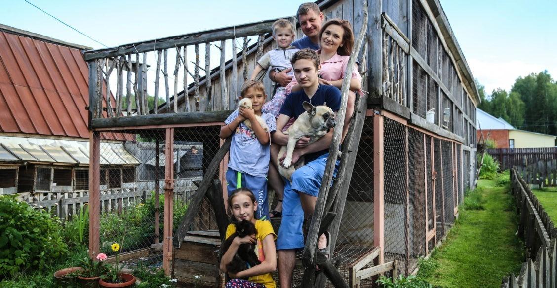 Шестеро детей, птенцы серой цапли, хорек-альбинос и поросенок Витька
