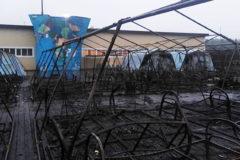 """В лагере """"Холдоми"""" пожаловались на травлю вожатых после пожара в палаточном городке"""