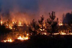 После масштабного наводнения в Иркутской области ввели режим ЧС из-за лесных пожаров