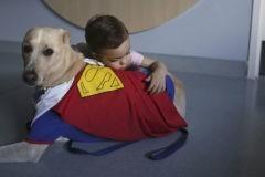 Доктор Пес. Как собаки-терапевты лечат детей, утешают заключенных и успокаивают бывших военных