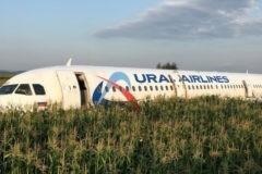 Минприроды потребовало проверить свалки у аэропорта в Подмосковье после аварийной посадки самолета