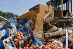 За четыре года в России уничтожили 32 тысячи тонн санкционных продуктов
