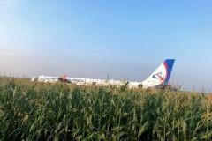 Самолет с загоревшимся двигателем сел в кукурузном поле. Пилот спас жизни 223 пассажиров и членов экипажа