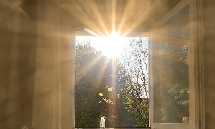 Сретение - лицом к лицу с Богом. Три истории о встрече