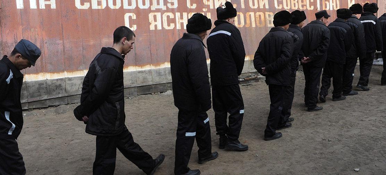 «Одни на свободе, других — не посчитали». Почему в России снизилось число заключенных, а преступность растет