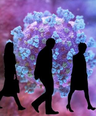 Адекватно о пандемии коронавируса