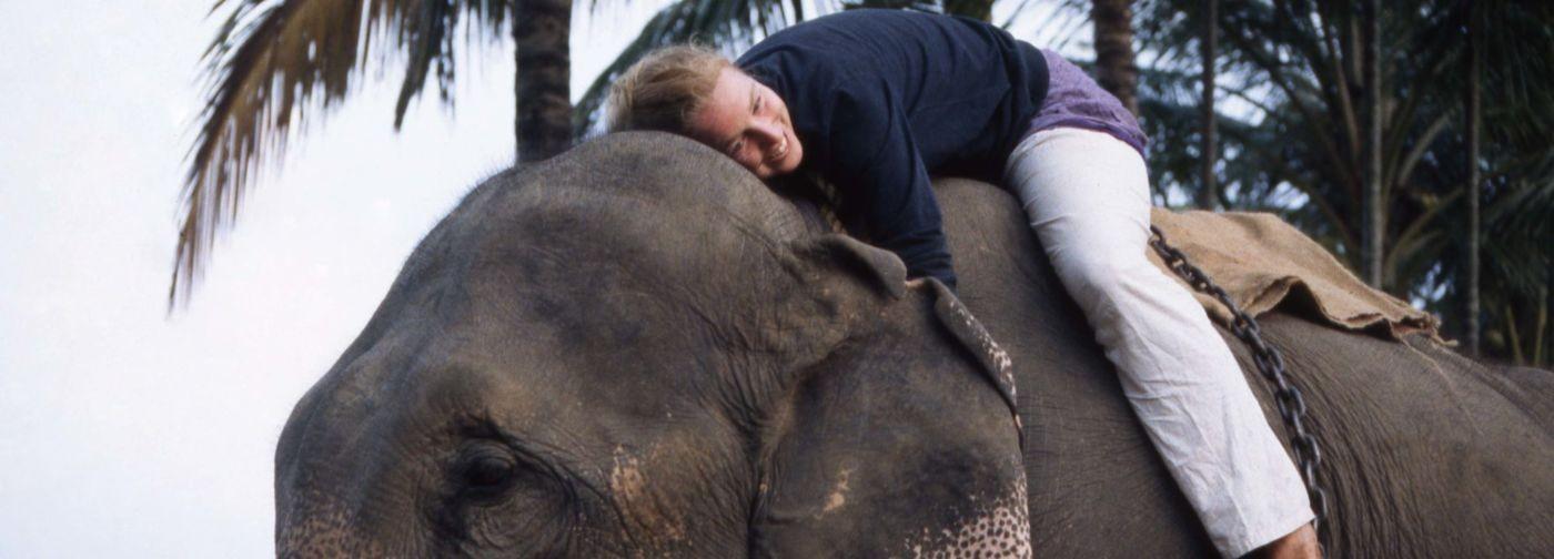 Всю жизнь я скрывала, что не вижу. А когда из-за правды потеряла все — пересекла Индию на слоне