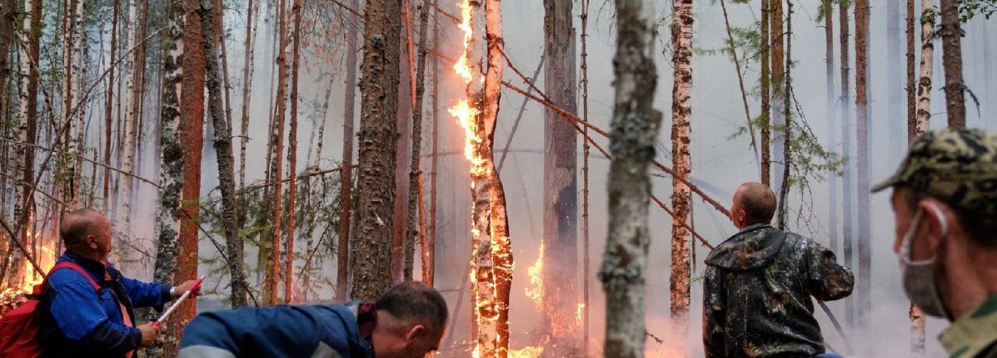 «Я приготовила сумку с документами, чтобы бежать». Лесной пожар в Югре подошел к городу