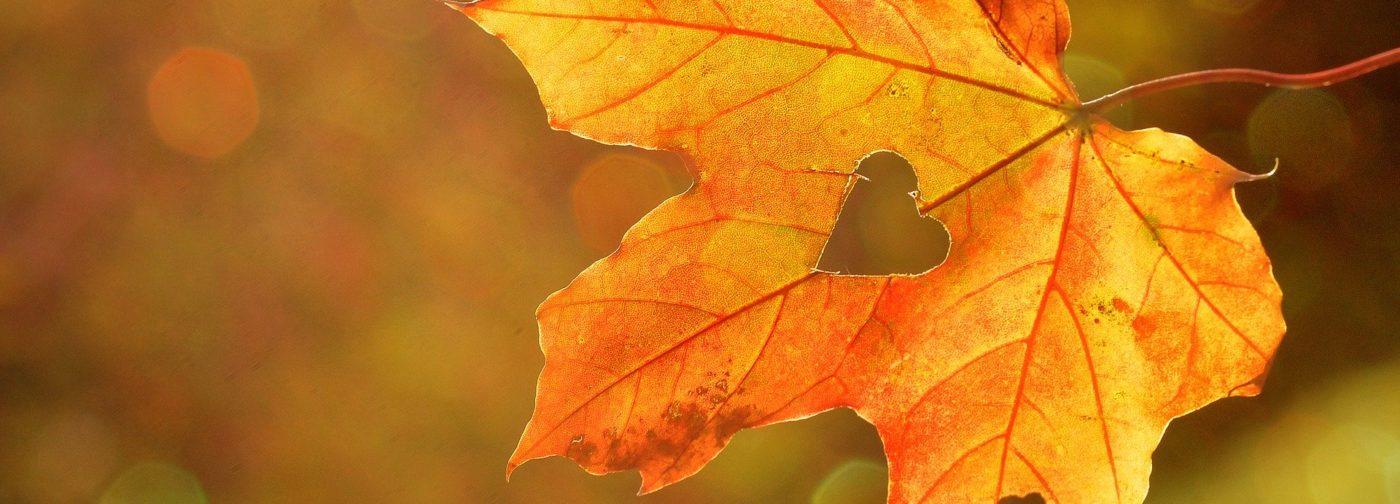 Осенние поделки в сад, школу и для дома