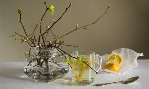 «Весной всем не хватает витаминов!» 8 мифов об авитаминозе