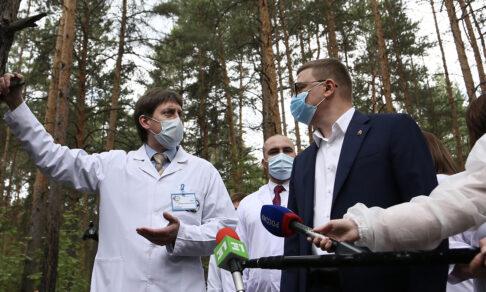 Детская больница против реликтового леса. Как экоактивисты и власти делят 4,5 га земли